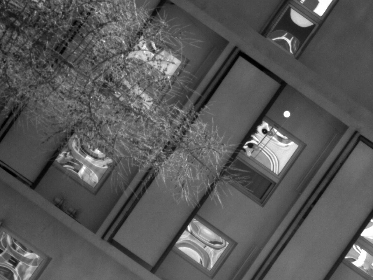 infrared_windows.jpg