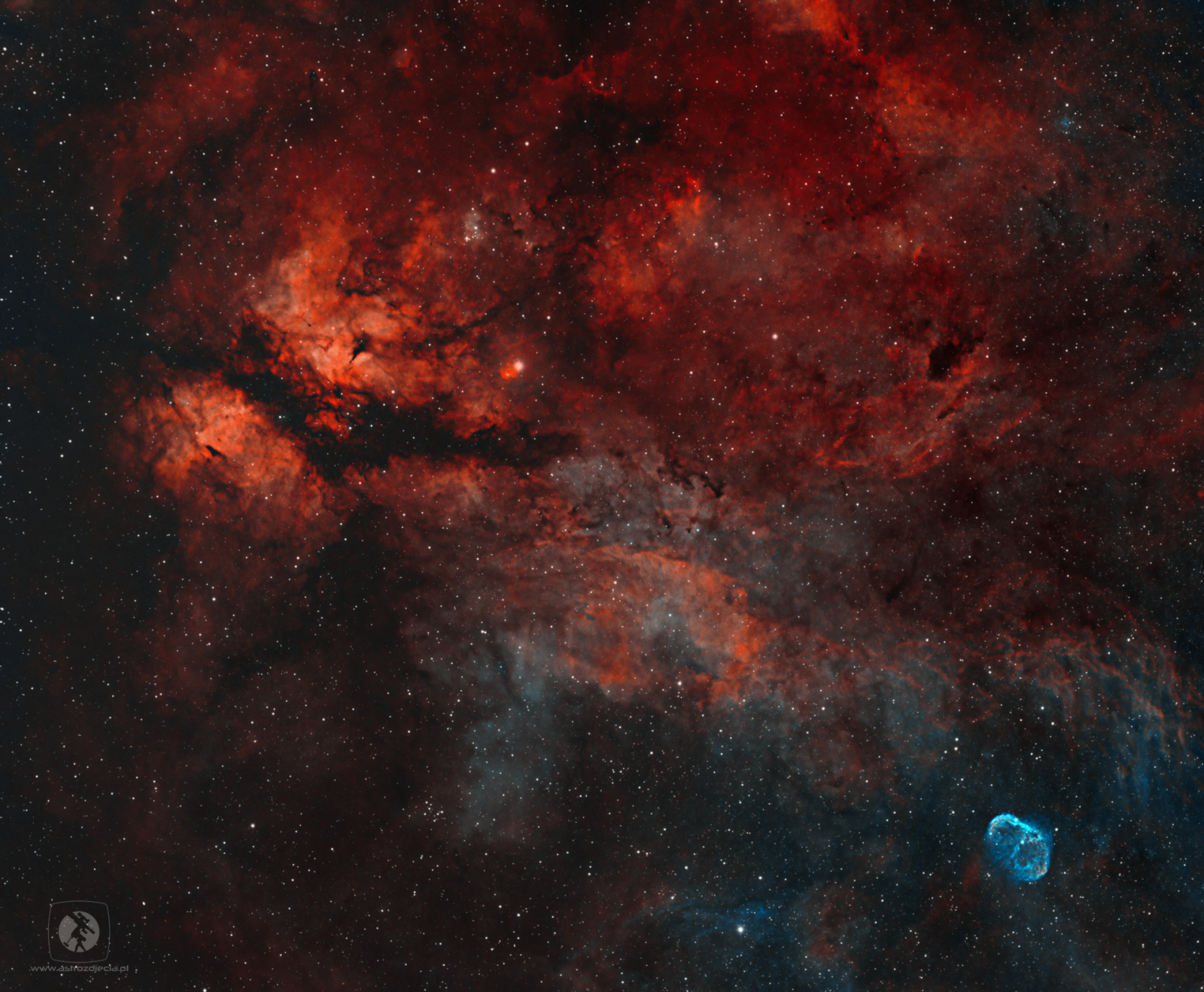 IC1318-HOO.thumb.jpg.3f4cf288902266a29de6cd980ac3d8db.jpg