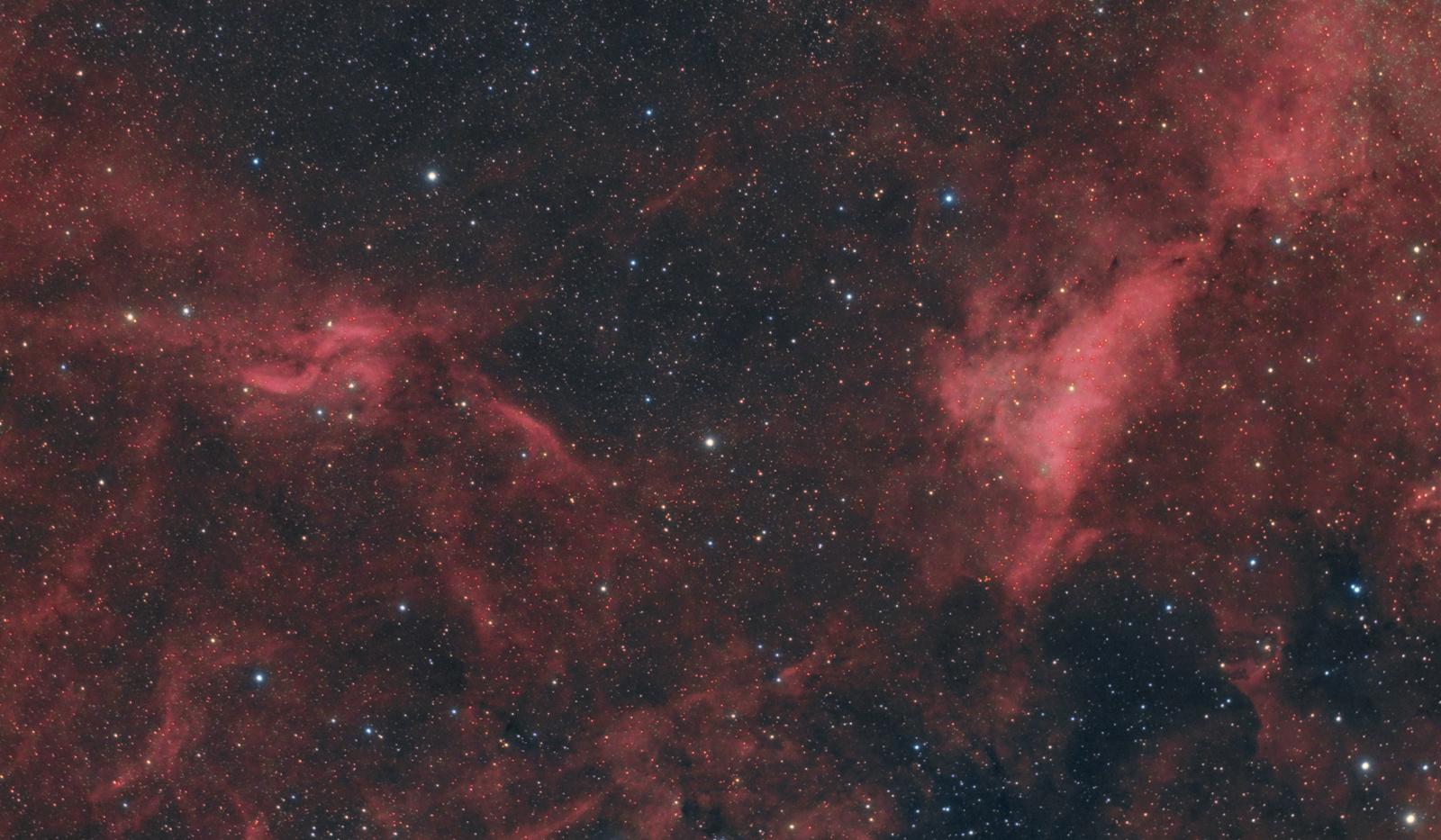 IC1318 jpg.jpg