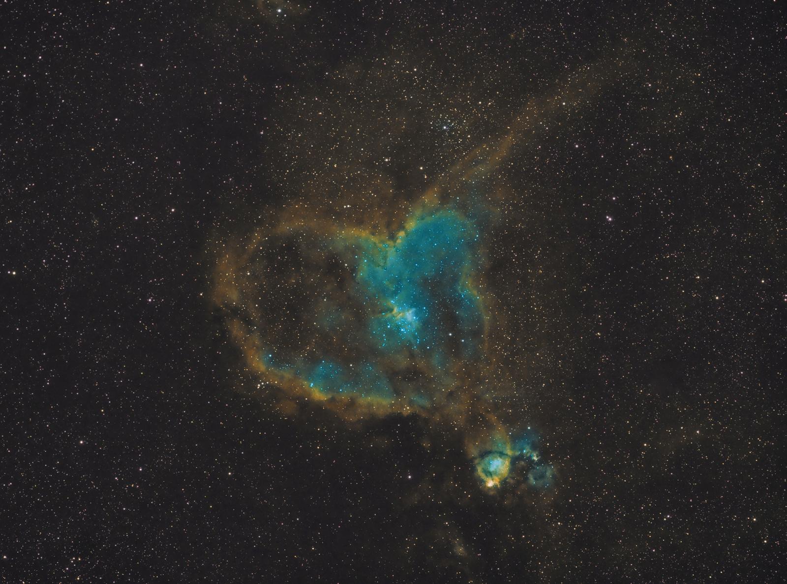 SHO IC 1805.jpg