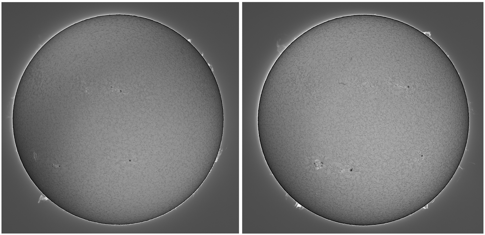2021-09-05-07-L-Sun_Halpha_ZWO-ASI183MM-Pro.thumb.jpg.2921347c6293fb88756e85a102b9b4d6.jpg