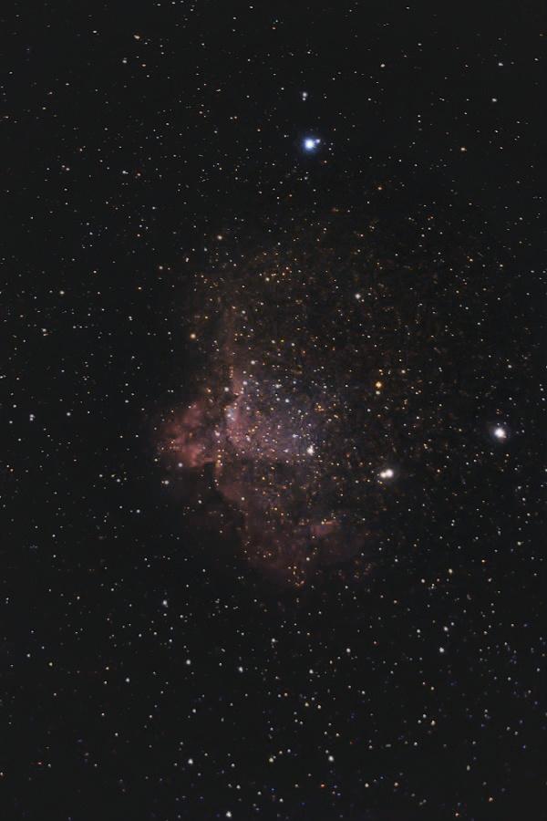starless bez darkow full1-Recovered new male1annie .jpg