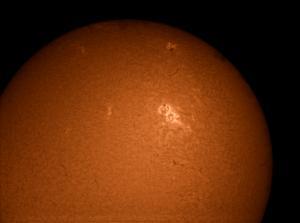 Sun_L_102039_pp.jpg