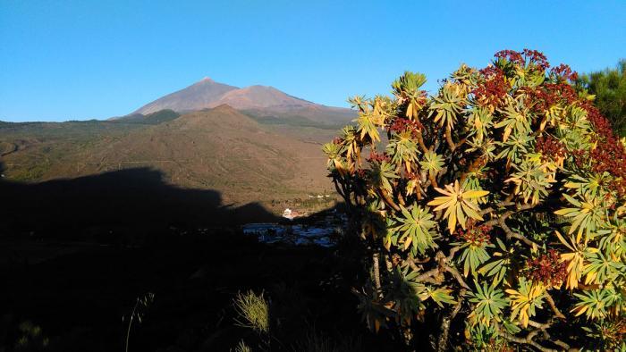 Teide i Pico Viejo.jpg