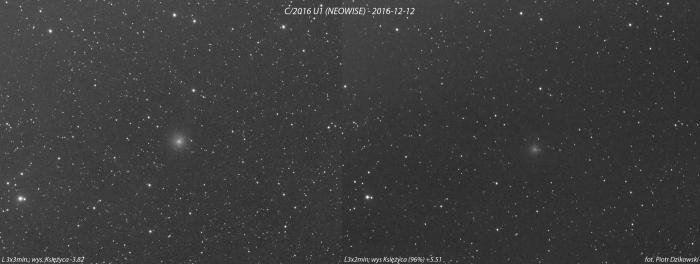 C-2016.jpg