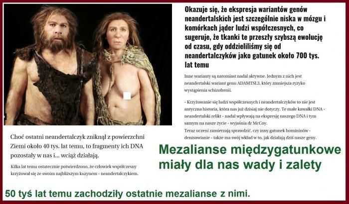 MEZALIANS.jpg