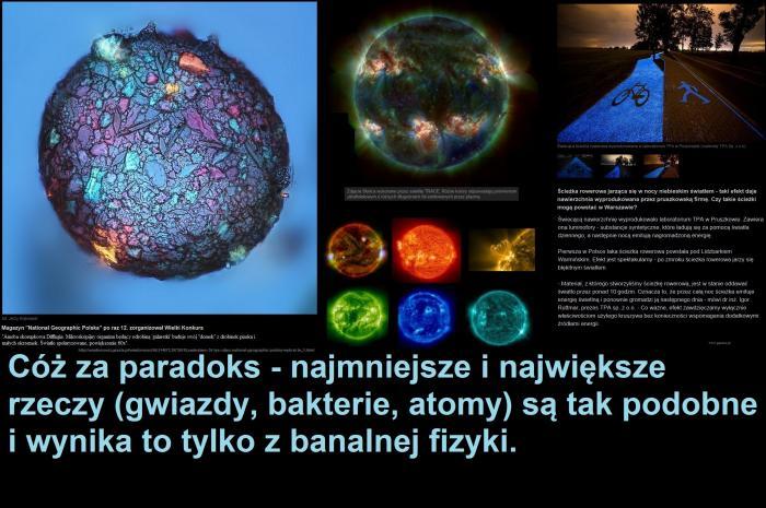 ameba0.jpg