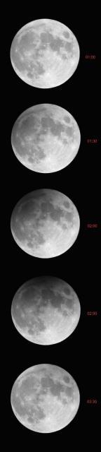 Moon_10-11_02_2017_1750040.jpg