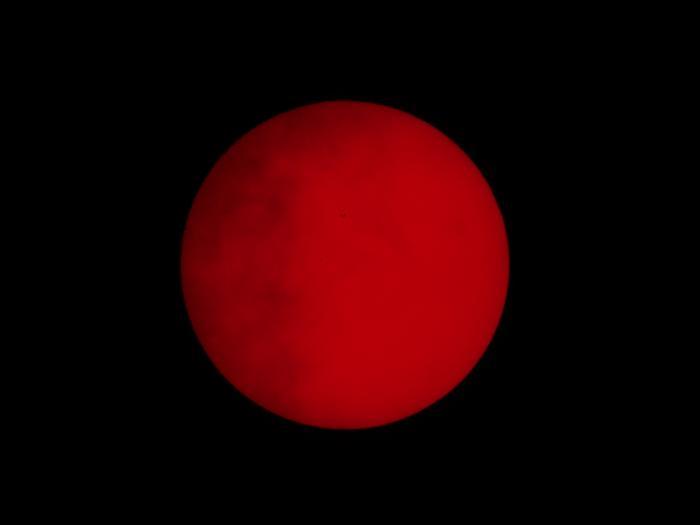 SUN_TM2016_13_15.jpg
