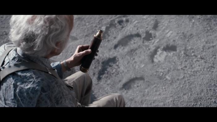Man On The Moon 2015 (9).jpg