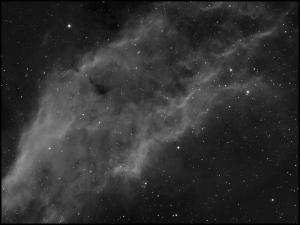 NGC1499_Patrix.jpg