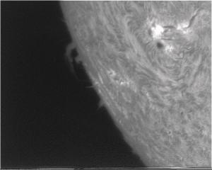 sun3.jpg