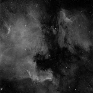 NGC7000 10xHaSIIOIIIx600s-001Ha.jpg