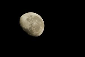 _MG_7859-Moon1.jpg