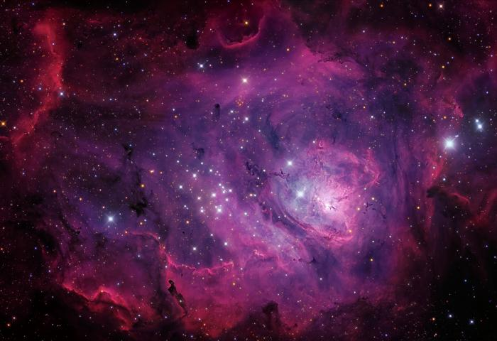 M8-8-25-16-webMillerWalker1024.jpg