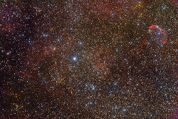 Crescent_IC4996_short_2017_250.jpg