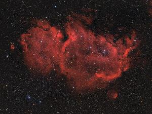 IC1848_2015_300.jpg