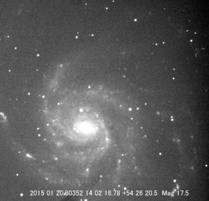 PN-M101-2.jpg
