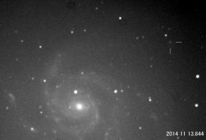 PN-M101.jpg