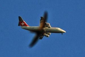 Jerzyk (ptak) na tle Avro RJ100.jpg