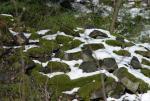 kamienie_w_sniegu.jpg